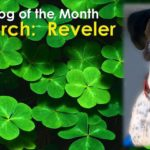 Dog Of The Month: March 2017